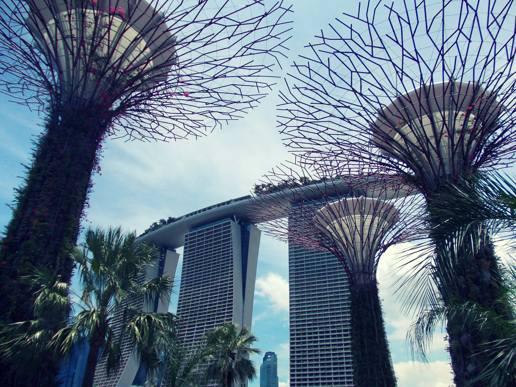 Supertree Grove, Singapore - A bucket list for Southeast Asia!