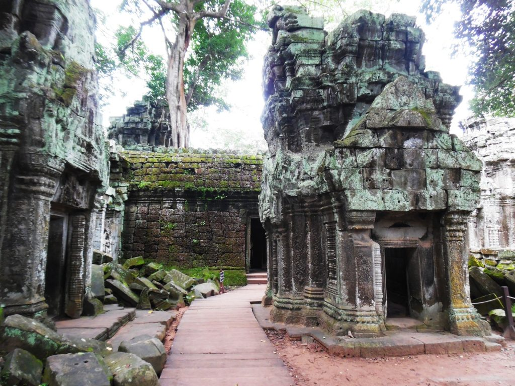 Ta Prohm Temple in Siem Reap, Cambodia - A bucket list for Southeast Asia