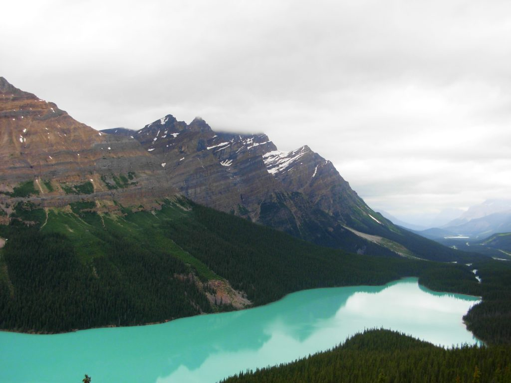 Peyto Lake in Canada - Planning a dream trip is one of the best things to do during lockdown!