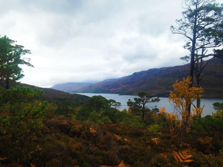 Beinn Eighe National Nature Reserve, Scotland
