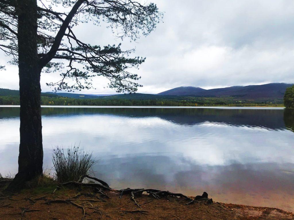 Loch Garten, The Cairngorms National Park, Scotland